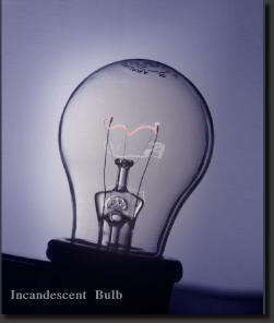 lightbulb3copy